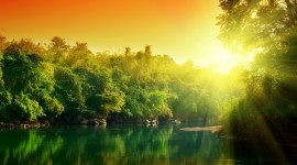 Forest River Sunset Wallpaper Gallery