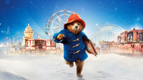 Paddington wallpapers high quality