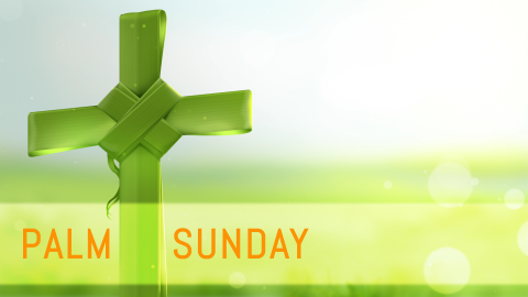 Palm Sunday wallpapers high quality