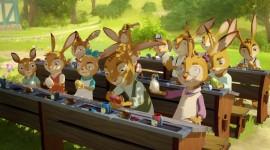 Rabbit School Photo Free