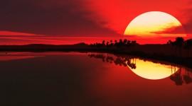 Scarlet Sunset Photo