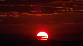 Scarlet Sunset Photo#1