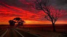 Sunset On The Road Wallpaper Download