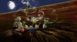 Un Gallo Con Muchos Huevos Wallpaper 1080p