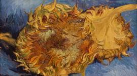 Vincent Van Gogh Wallpaper 1080p