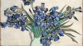 Vincent Van Gogh Wallpaper For PC
