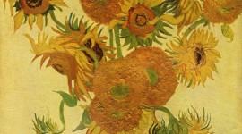 Vincent Van Gogh Wallpaper HQ
