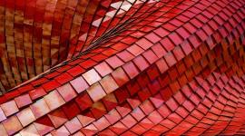 4K Convex Wallpaper