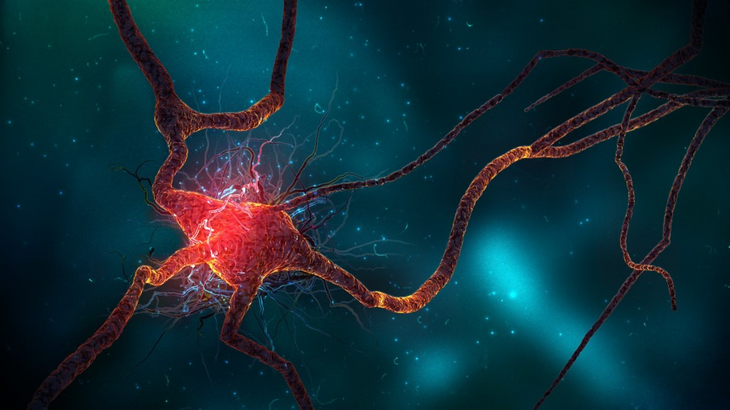 4K  Nerve Cell wallpapers HD
