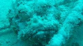 4K Sea Depth Wallpaper For IPhone