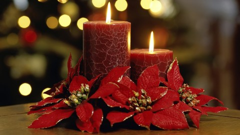 Candle Bouquets wallpapers high quality