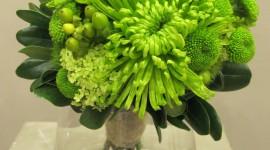 Chrysanthemum Bouquet Wallpaper For Mobile#1