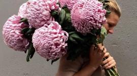 Chrysanthemum Bouquet Wallpaper Full HD