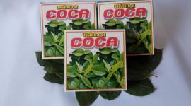 Coca Leaves Best Wallpaper