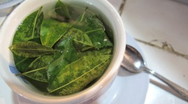 Coca Leaves Wallpaper Gallery