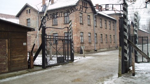 Concentration Camp wallpapers high quality