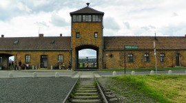 Concentration Camp Wallpaper Download