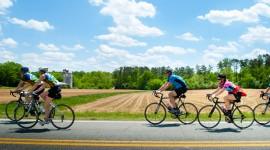 Cycling Trip Desktop Wallpaper For PC