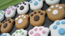 Dog Cookies Photo