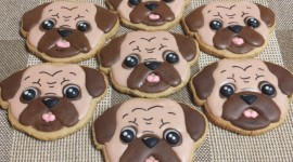 Dog Cookies Photo Download