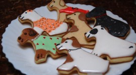 Dog Cookies Wallpaper Download