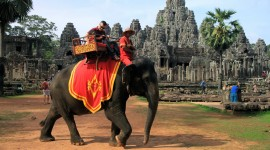 Elephant Ride On Photo
