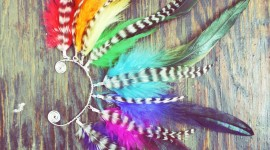 Feather Earrings Wallpaper For Android