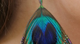 Feather Earrings Wallpaper For Android#1