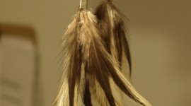 Feather Earrings Wallpaper For IPhone#1