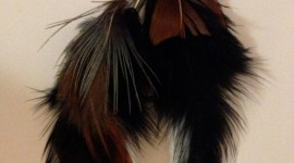 Feather Earrings Wallpaper For IPhone#2