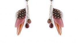 Feather Earrings Wallpaper Free