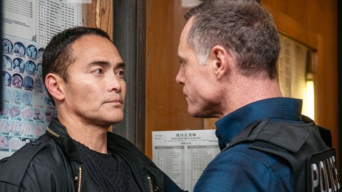 Mark Dacascos wallpapers high quality