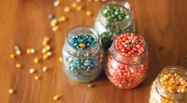 Multi Colored Popcorn Photo Free
