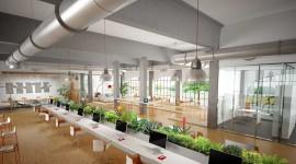 Open Space Office Wallpaper 1080p