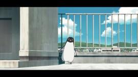 Penguin Highway Image