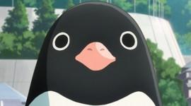 Penguin Highway Wallpaper For IPhone