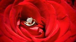 Ring In Roses Desktop Wallpaper