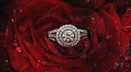 Ring In Roses Desktop Wallpaper HD