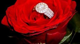 Ring In Roses Wallpaper