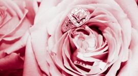 Ring In Roses Wallpaper Download