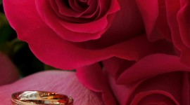 Ring In Roses Wallpaper For IPhone Download