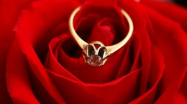 Ring In Roses Wallpaper Full HD