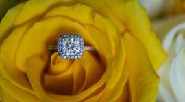 Ring In Roses Wallpaper HQ