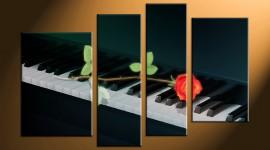 Rose Piano Wallpaper Free