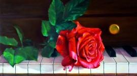 Rose Piano Wallpaper Gallery