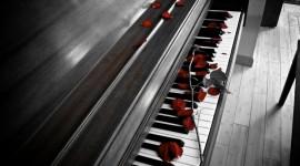 Rose Piano Wallpaper HQ