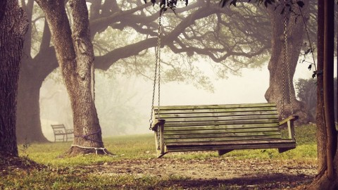 Swing Tree wallpapers high quality