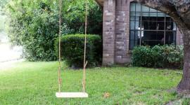 Swing Tree Wallpaper Download