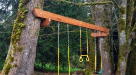 Swing Tree Wallpaper For Android#3