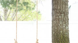 Swing Tree Wallpaper For IPhone